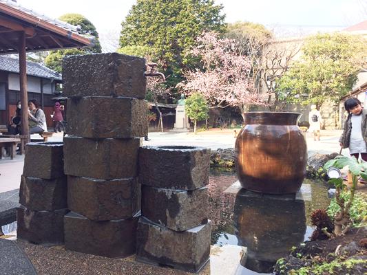 柿田川富士山百年水